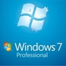 Microsoft Windows 7 Professional SP1 PL OEM 64-bit
